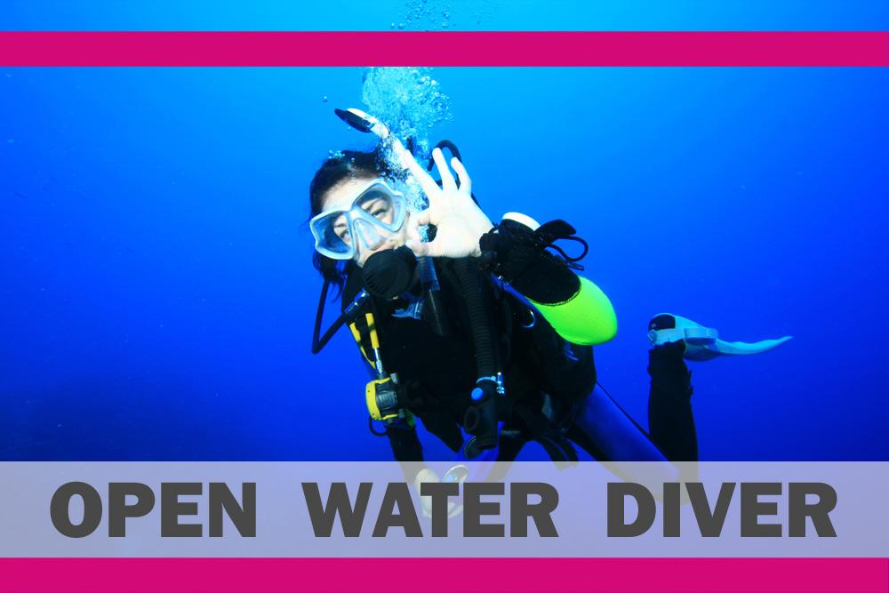 € 15,00 Buoni | IAC OWD Corso d'immersioni per principianti | DIVE CENTER KRK