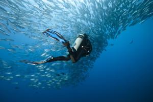 IAC AOWD diving course Krk Croatia